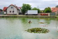 Rybník na návsi.