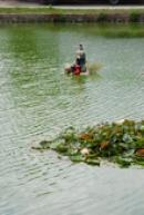 Vodník na zdejším rybníku.