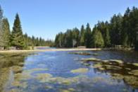 Rybník na Kladské.