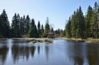 Pohled na jeden z rybníků.