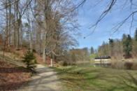 Cestou kolem rybníka v zámeckém parku.