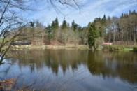 Rybník v zámeckém parku.