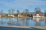 Místní rybník.