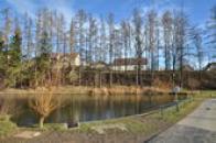 Obecní rybník.