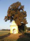 Kaplička ležící severně od vsi.