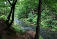 Pohled na říčku Kamenice.