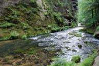 Krása přírody nedaleko Hřenska.