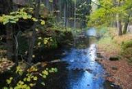 Okolí říčky Chřibská Kamenice bylo vyhlášeno přírodní rezervací.