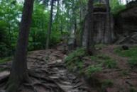 Cestou na hrad Šauenštejn.