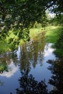 Vodní kanál malebným Třeboňskem.