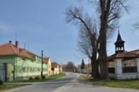 Náves v Kokovicích.