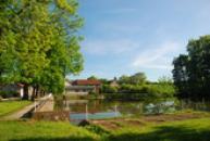 Zdejší rybník.