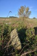 Jeden z řady kamenů.