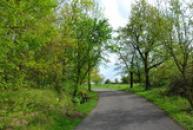 Cestou na hradiště Budeč.