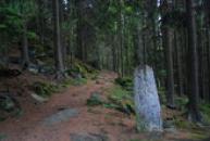 Křížek v lese nedaleko vásky.
