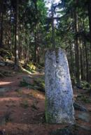 Křížek v nedalekém lese.