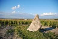 Pohled na menhir Zakletý mnich.