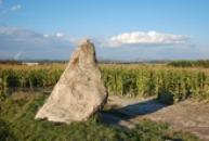 Menhir Zakletý mnich v Drahomyšli.