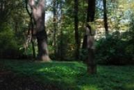 Nejstarší a největší anglický park v Čechách.