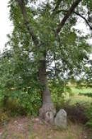 Keltský kámen.