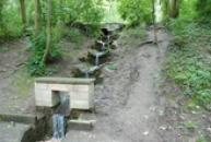 Voda od Boženiny studánky přitéká k Oldřichovu dubu.
