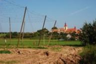 Panorama obce s kostelem sv. Jiljí.