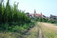 Pohled na obec s kostelem sv. Jiljí.