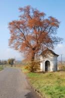 Kaplička nedaleko Solan.