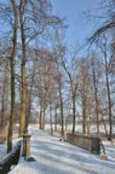 Zimní procházka.