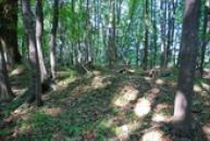 Zbytky hradiště, které sloužilo k ochraně území Čechů před kmenem Lučanů.