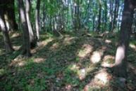 Hradiště sloužilo k ochraně území Čechů.