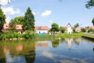 Rybník v Krupé.