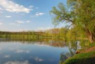 Lodenický rybník.