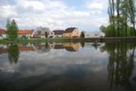 Rybník v Pavlíkově.