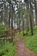 Cesta malebnou přírodou..