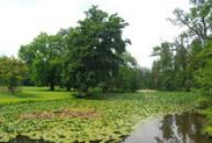 Zámecký rybník.