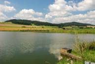 Vítovský rybník.