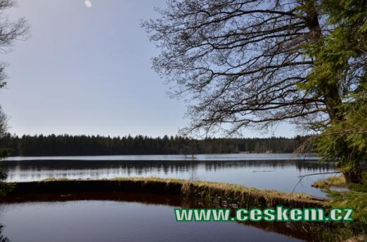 Severní část Kladského rybníku.