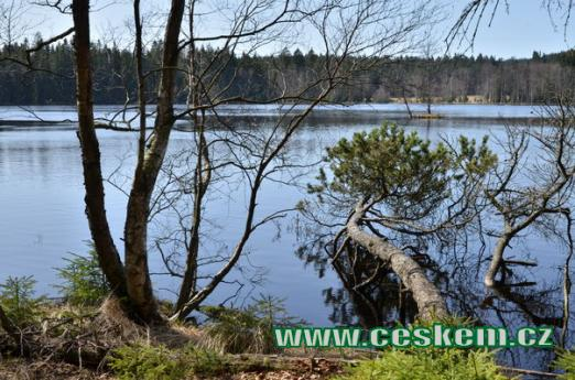 Pohled na Kladský rybník.