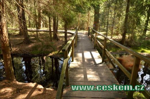 Cesta po dřevěném chodníčku.