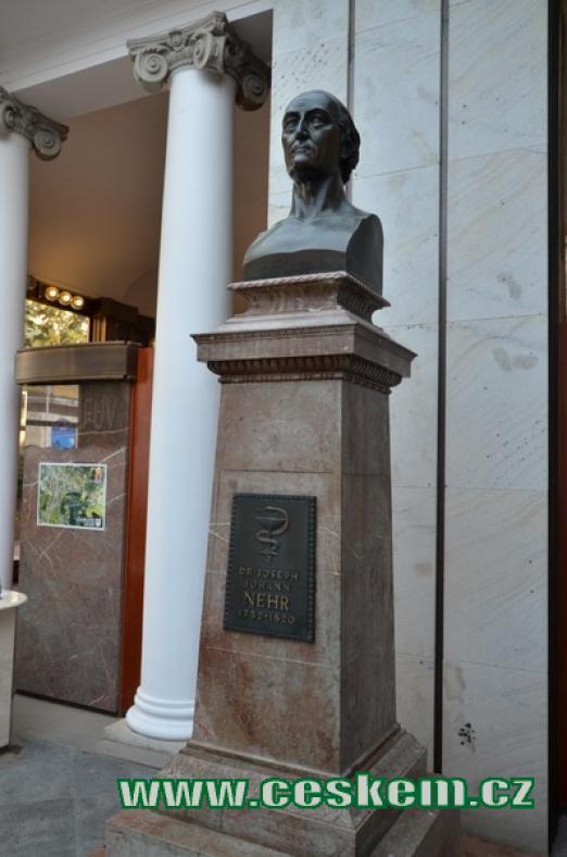 Busta Josepha Johanna Nehra.