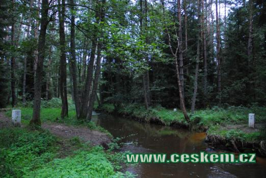 ... na soutoku Koštěnického a Červeného potoka.