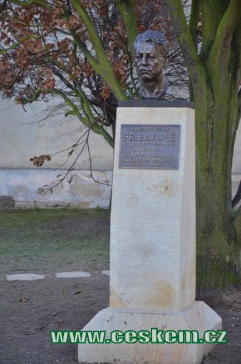 Busta Františka Bakuleho.