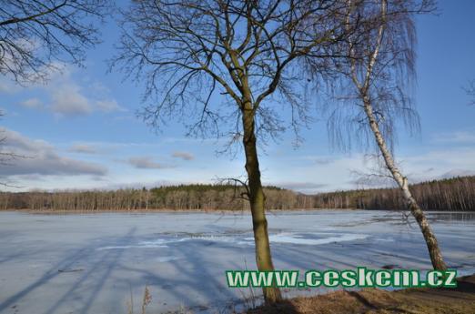 Turyňský rybník na konci zimy.