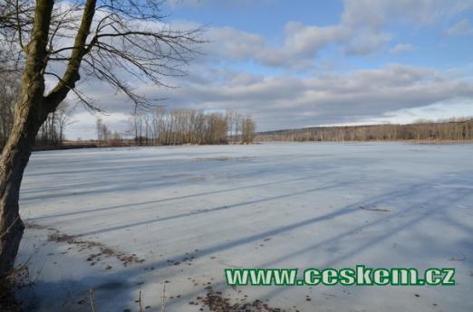 Zimní Turyňský rybník.