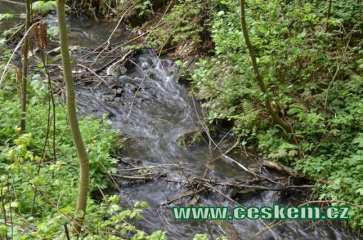 Pohled na Žlábecký potok.