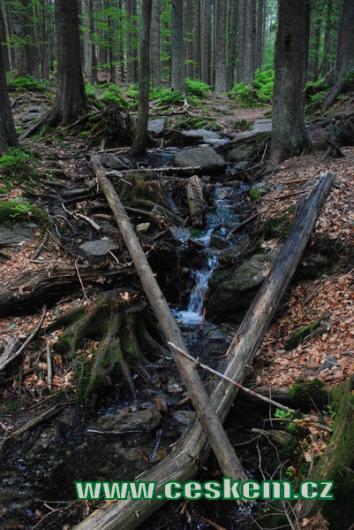 Lesní potůček nedaleko Čertova jezera...