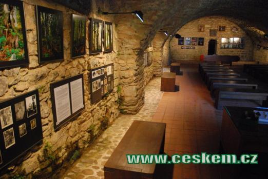 Výstavní prostory v bývalých hradních konírnách.
