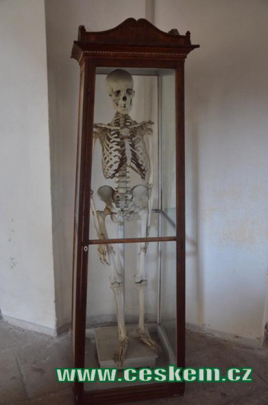 Kostra na chodbě kláštera.