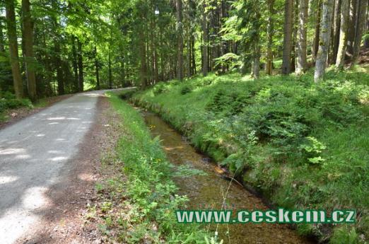 Kanál u Jelenského lesa.